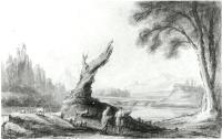 Description: Landscape with Dead Tree