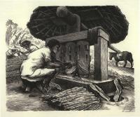"Description: Grinding Sugar Cane, from the portfolio ""Mexican People"" (1946)"